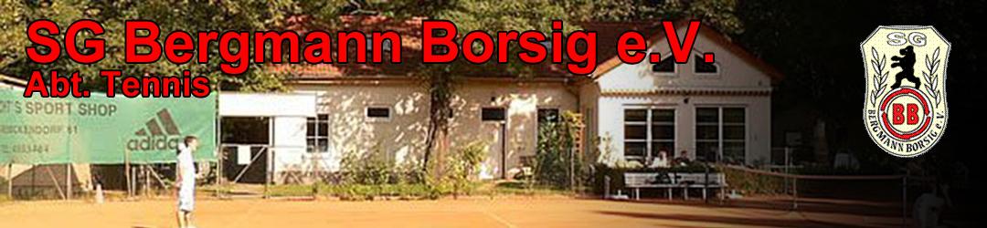 SG Bergmann-Borsig e.V.